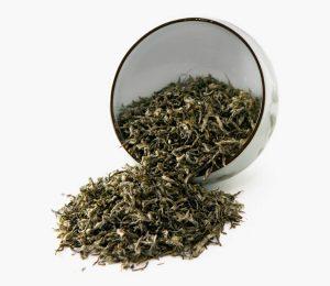 Green-Tea_Bi-Luo_Chun_Gt02